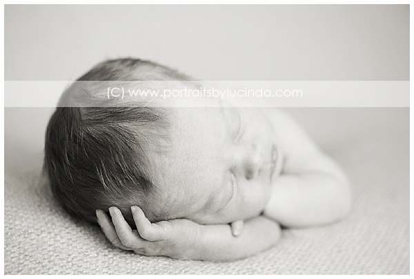 best newborn photographer in olathe, overland park, kansas city, leawood, kid photographer, portrait photographer, newborn photo session
