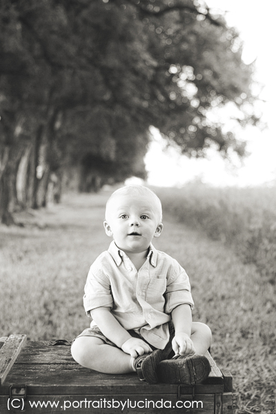 best kid photographer, baby photographer, kids first birthday photographer, portraits by lucinda, smash cake session
